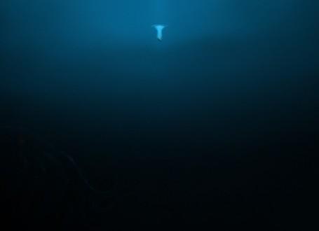 ocean-5